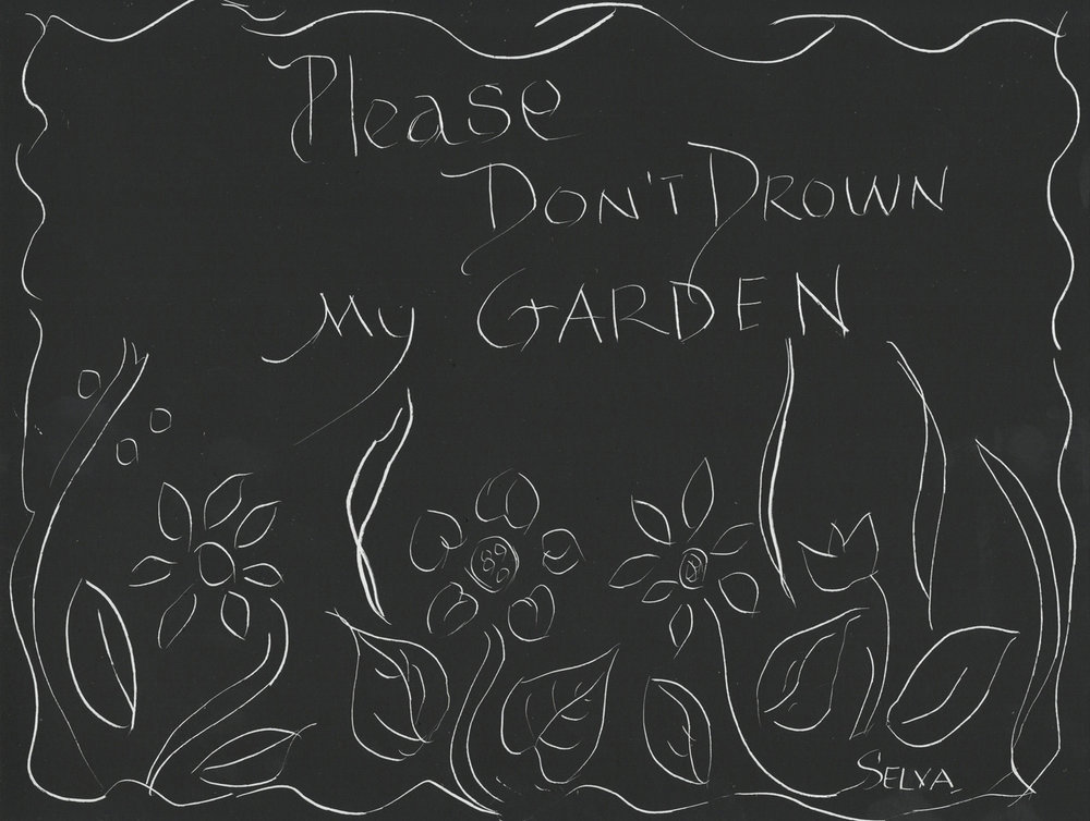 don't drown my garden.jpg