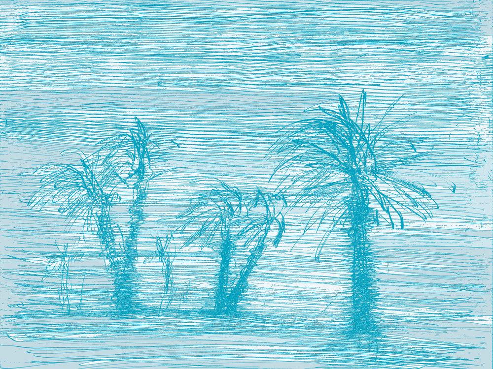 scratchy palm trees.jpg