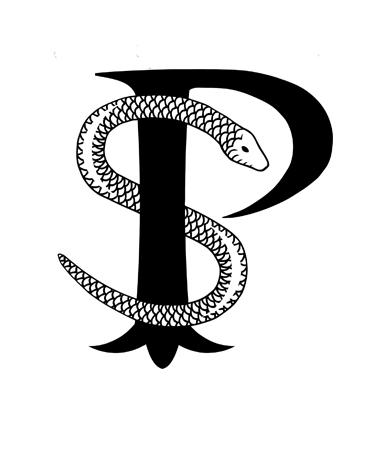 psyko-logo.jpg