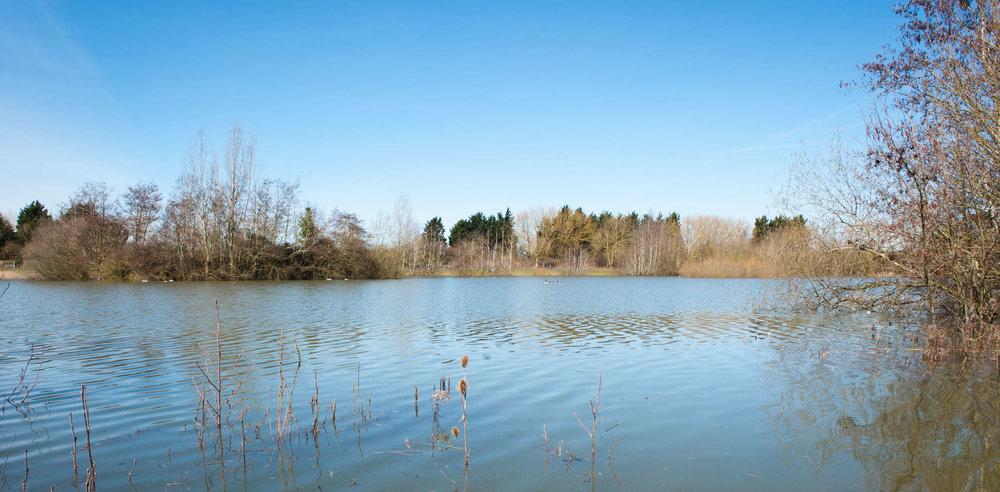 Lake -01 (2).jpg