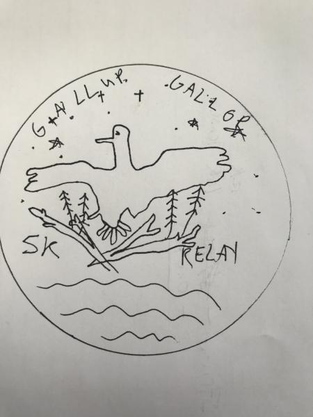 My fevered goose run inspired drawring