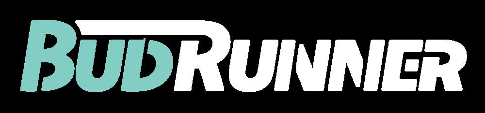 BudRunner_Logo (Final)-White-Aqua.png