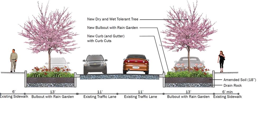 rain garden street section