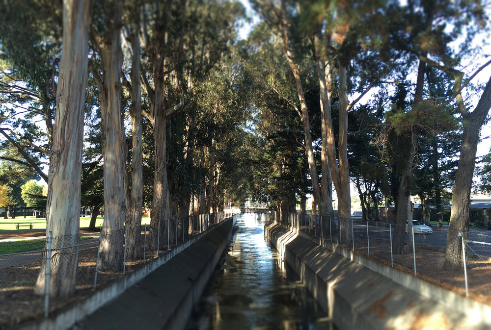 colma creek