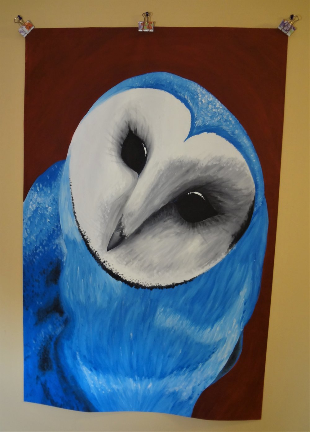 Blue Owl.jpg