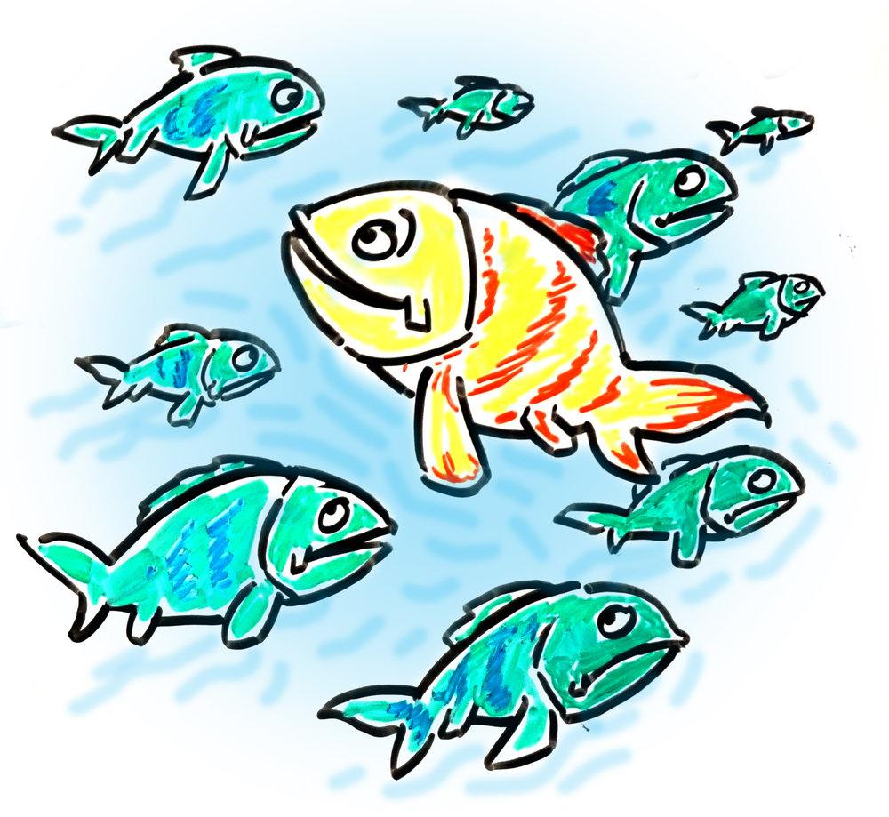 fishies.jpg