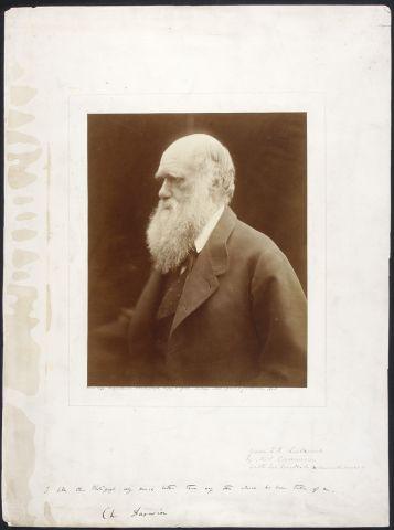 Happy birthday Charles Darwin