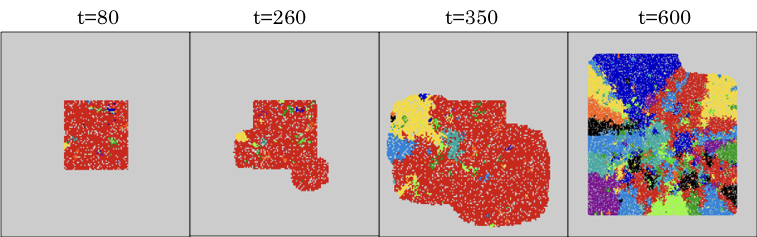 Example of simulation from Jack's agent-based model. Darker colors = fitter cells