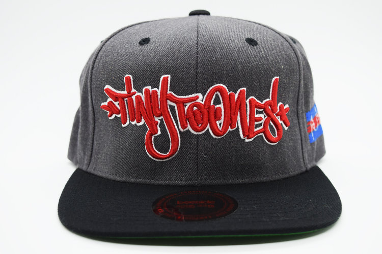 Tiny Toones Collaboration Snapback — Bee Side 56dd3b0fc77a
