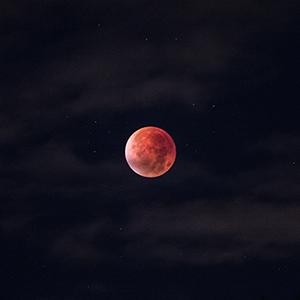 Dawn Morningstar - Pink Full Moon.png
