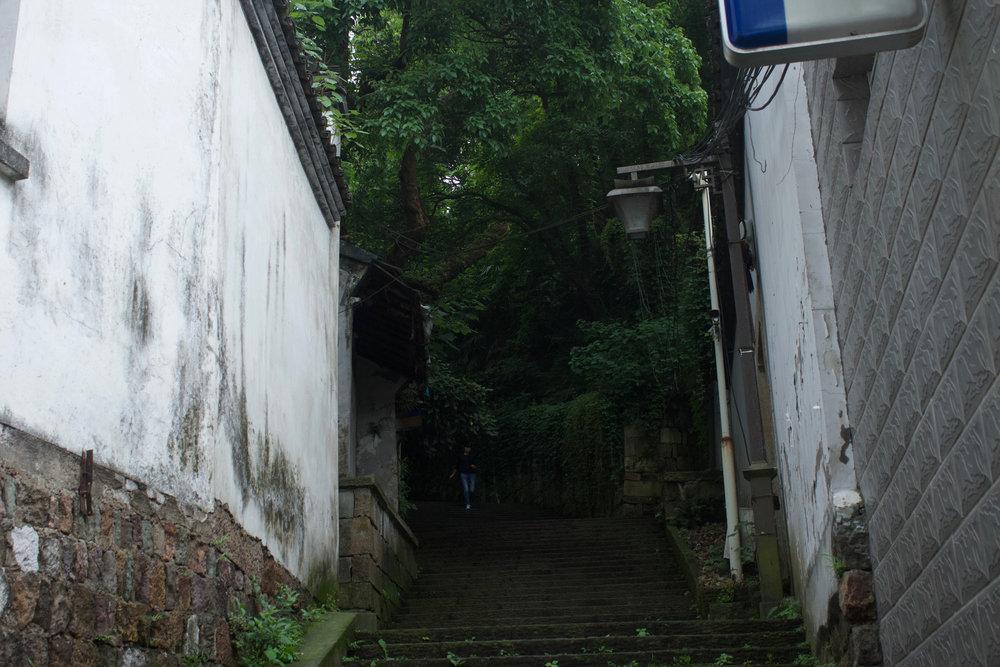 China_-41.jpg