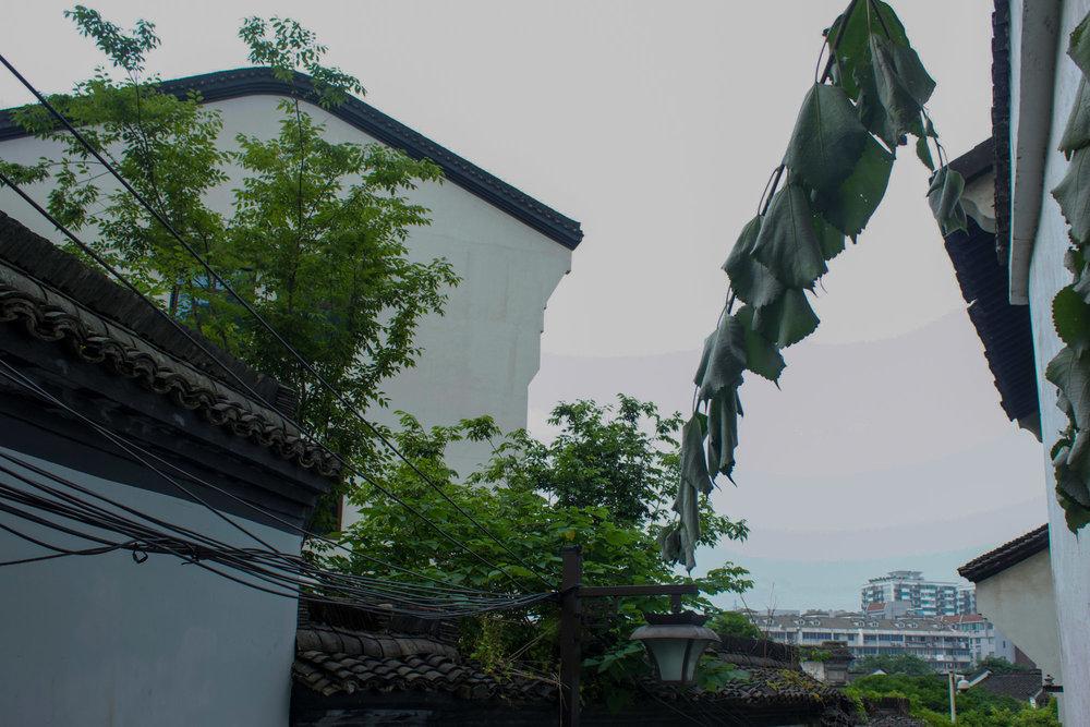 China_-43.jpg
