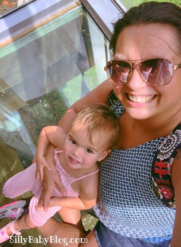 Earth Day at Zoo Miami. Bobcat Treehouse