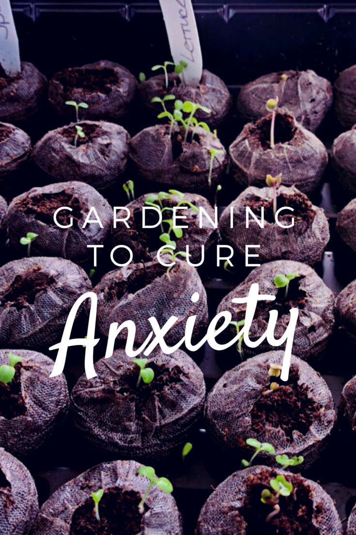 Gardening to Help With Anxiety