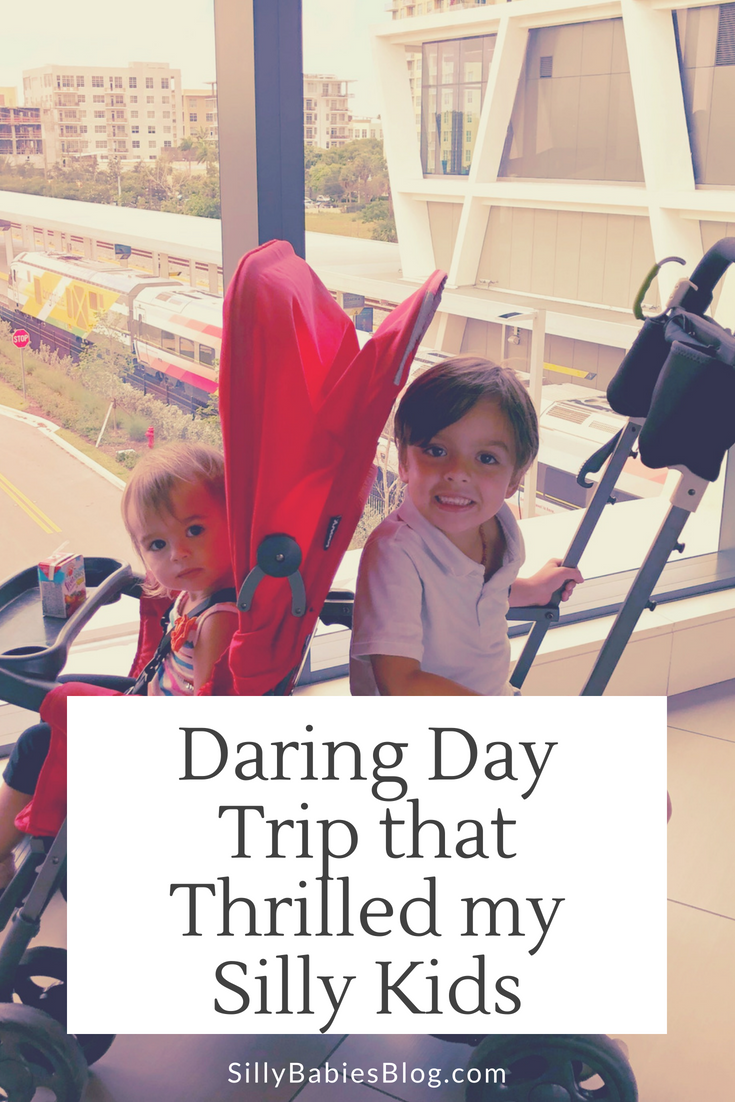 Daring day trip that thrilled my silly kids
