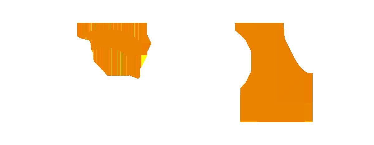 (c) Centrotour.com.br