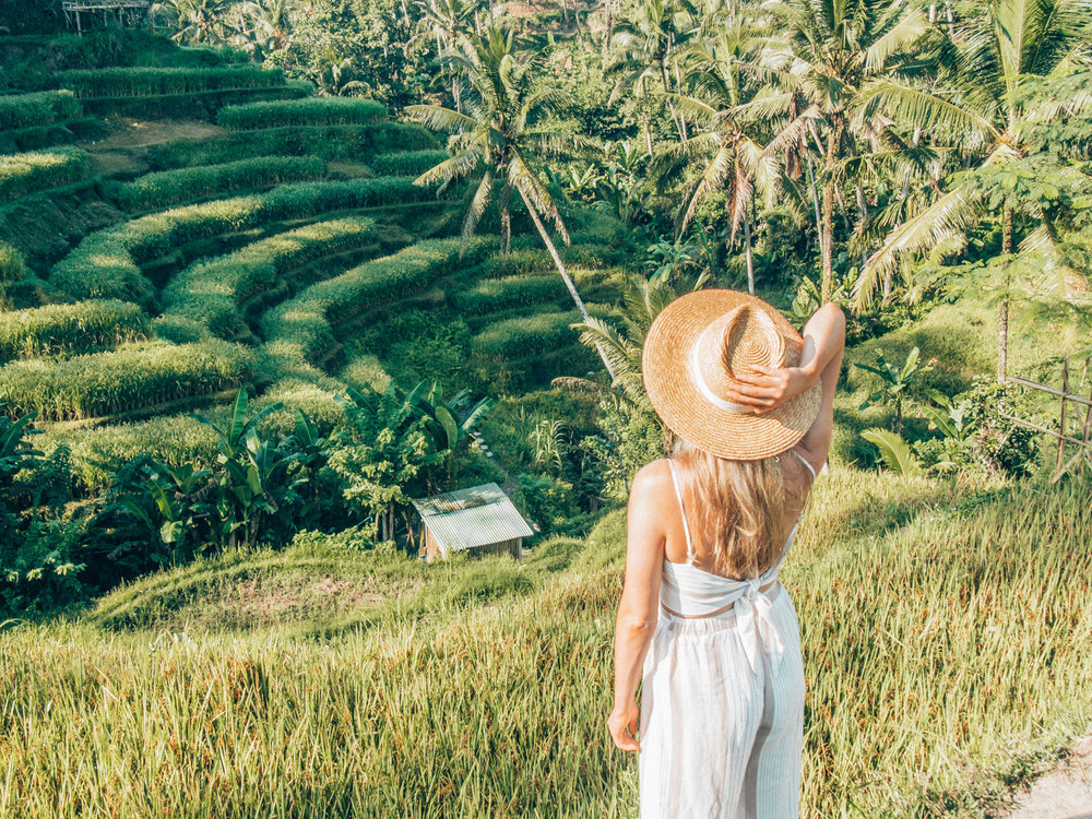 Tegalalong Rice Terraces