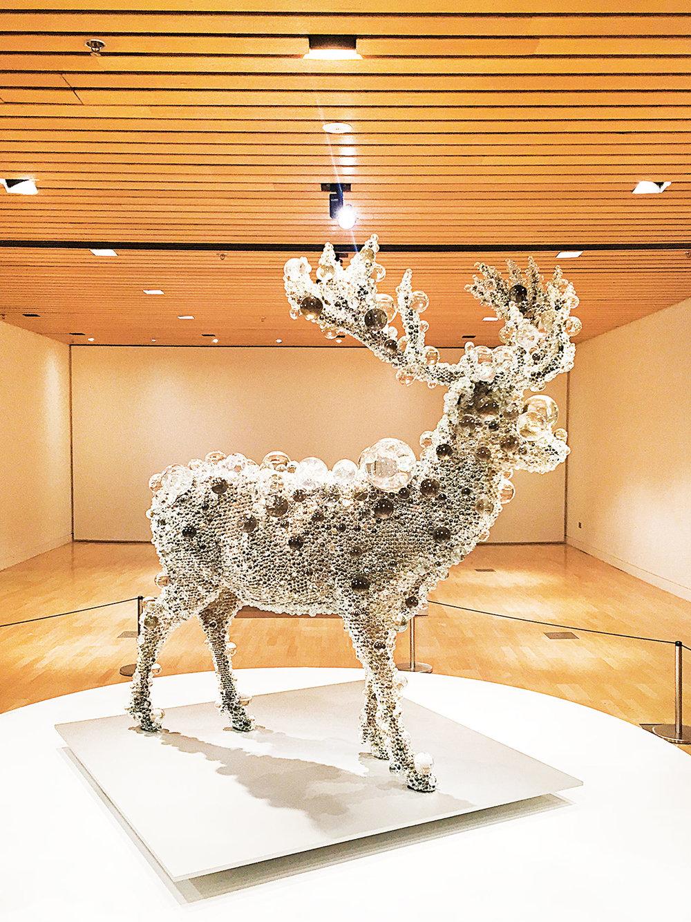 Melbartdiary_deer1.jpg