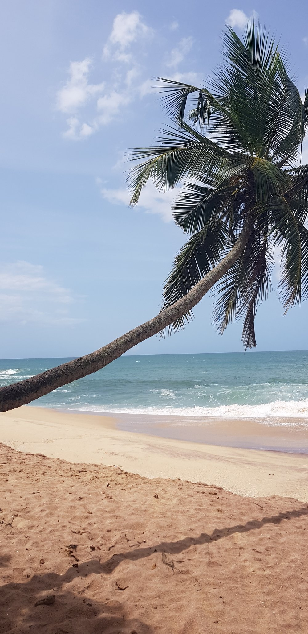 FIND YOURSELF IN SRI LANKA - HOLISTIC RETREAT