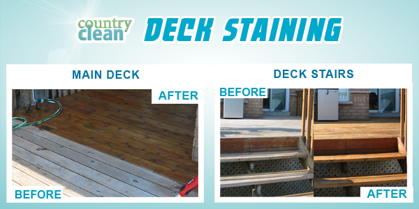 DECK STAINING copy.png