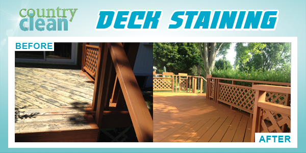 New Services deck staining 2.png