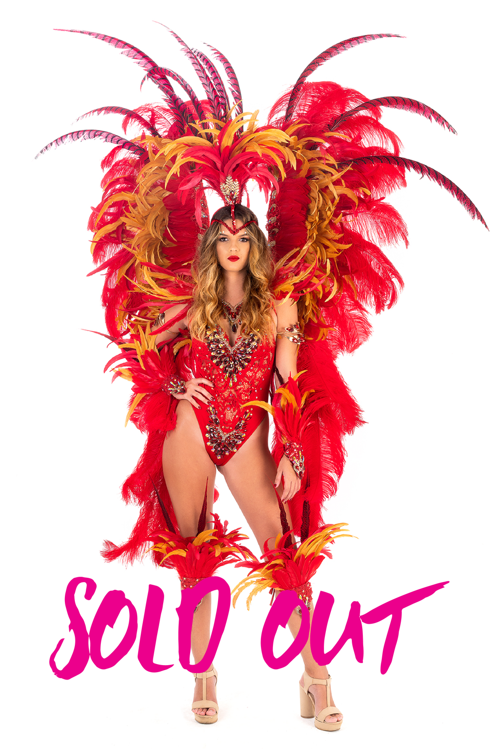 Sold Out Costumes-07.png