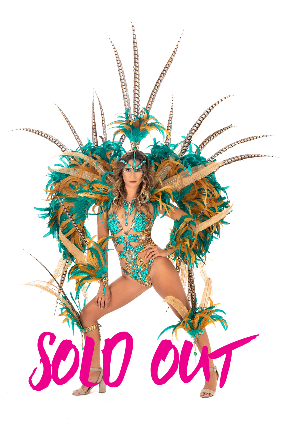 Sold Out Costumes 2-02.png