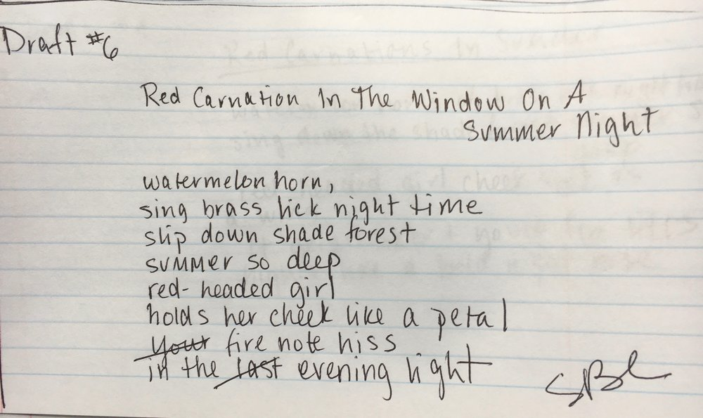 michael chaney and sara chaney poem month of sundays draft Red Carnation.jpg