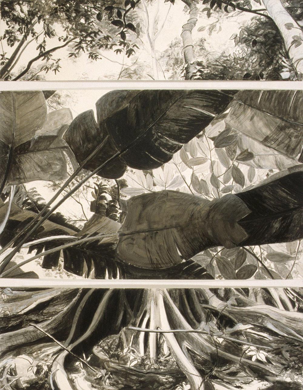 Selva Oculta #7
