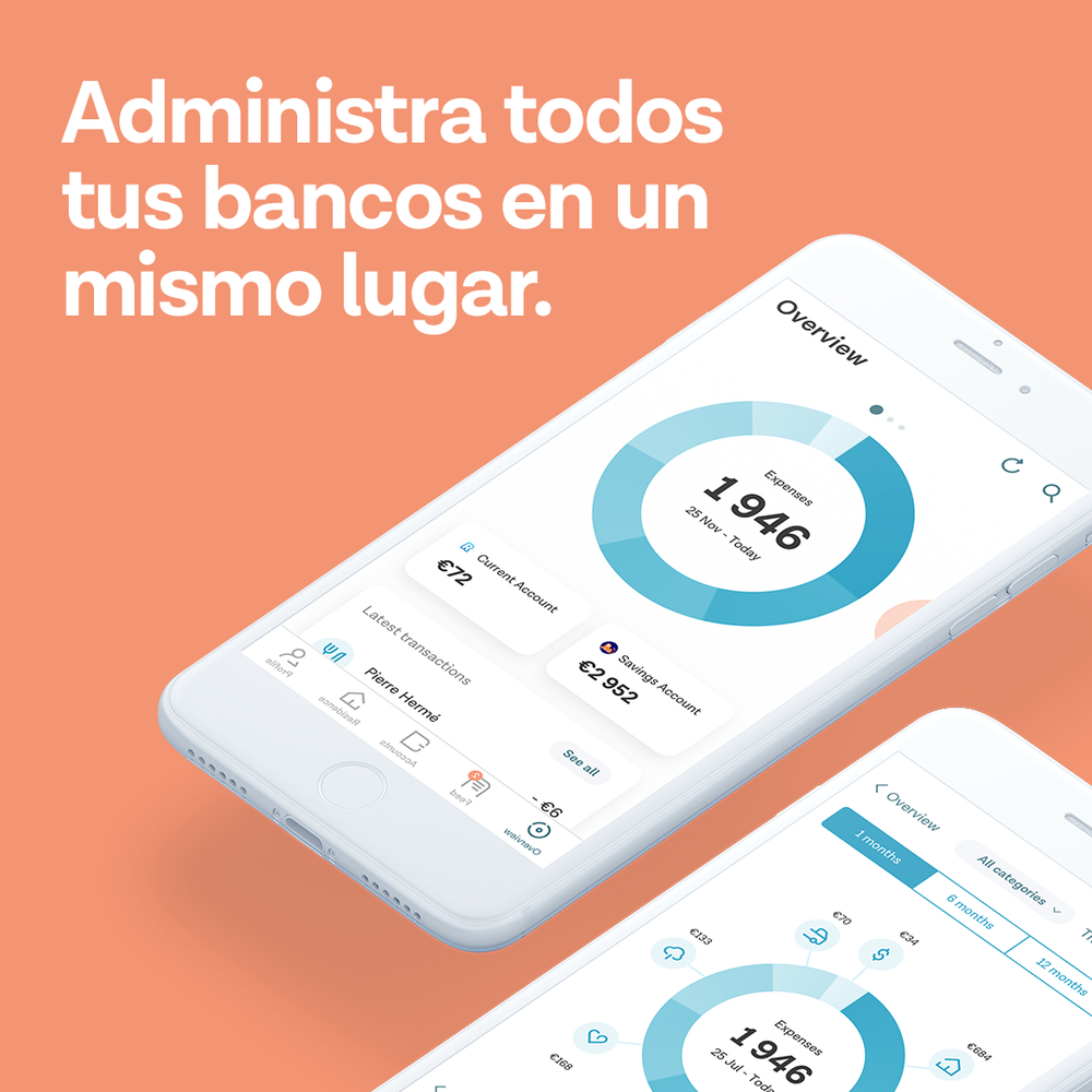 phone-Manage all of your banks in one place.png