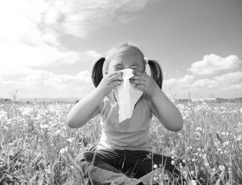 b&w allergies.jpg