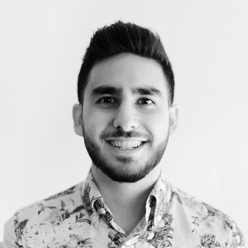 Adam El-Masri  Principal Engineer