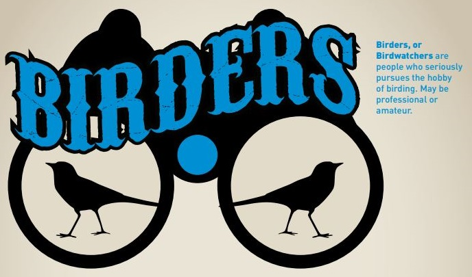 birders.JPG