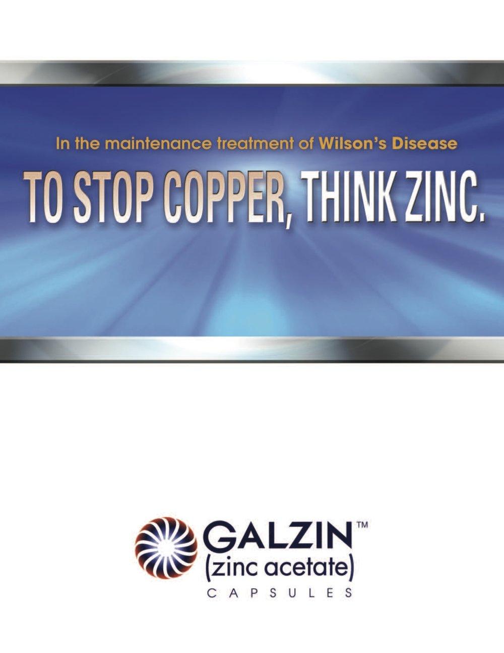 Galzin-Banner-Style.jpg