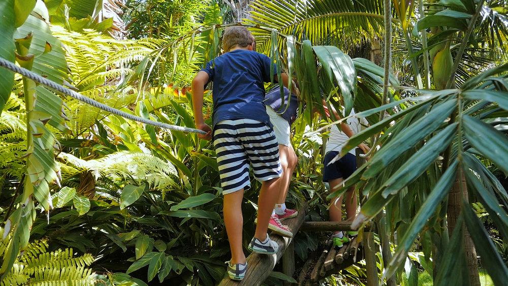 01_Canguros Jardin Papagayo 2016 45 seg-.00_00_54_22.Imagen fija016.jpg
