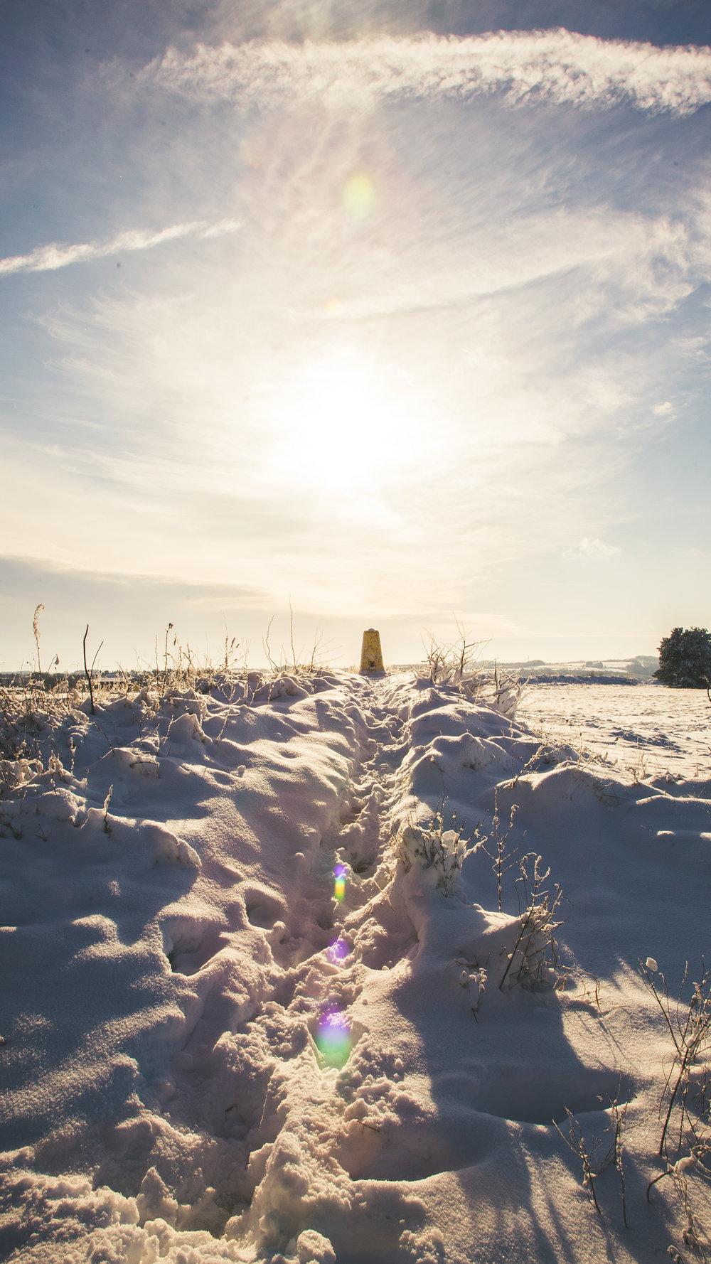 Leckhampton Hill snow-6.jpg
