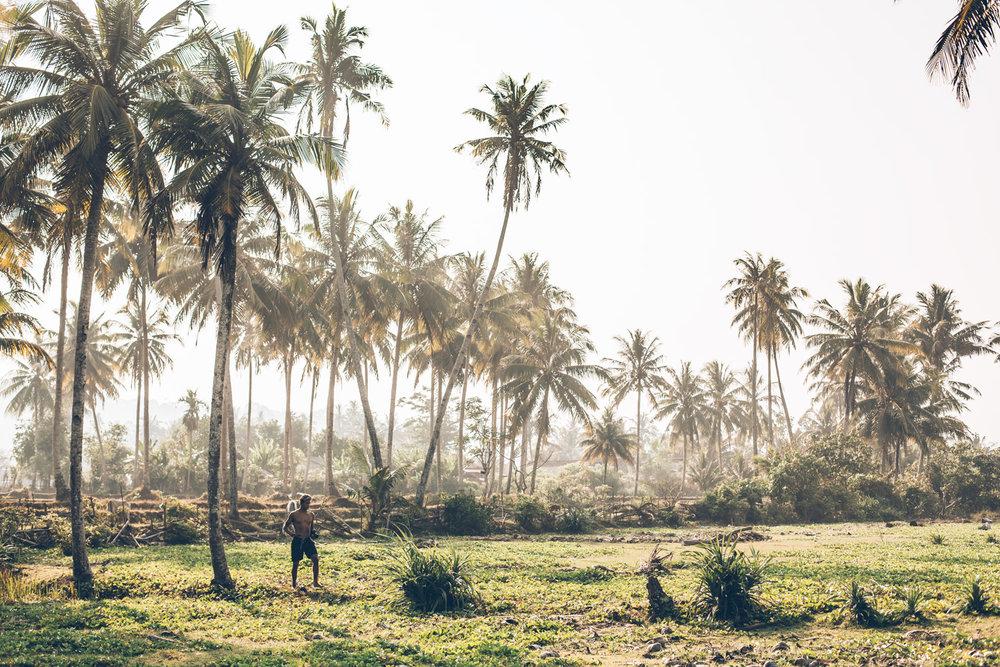 Noah Collins, Sumatra, Jungle