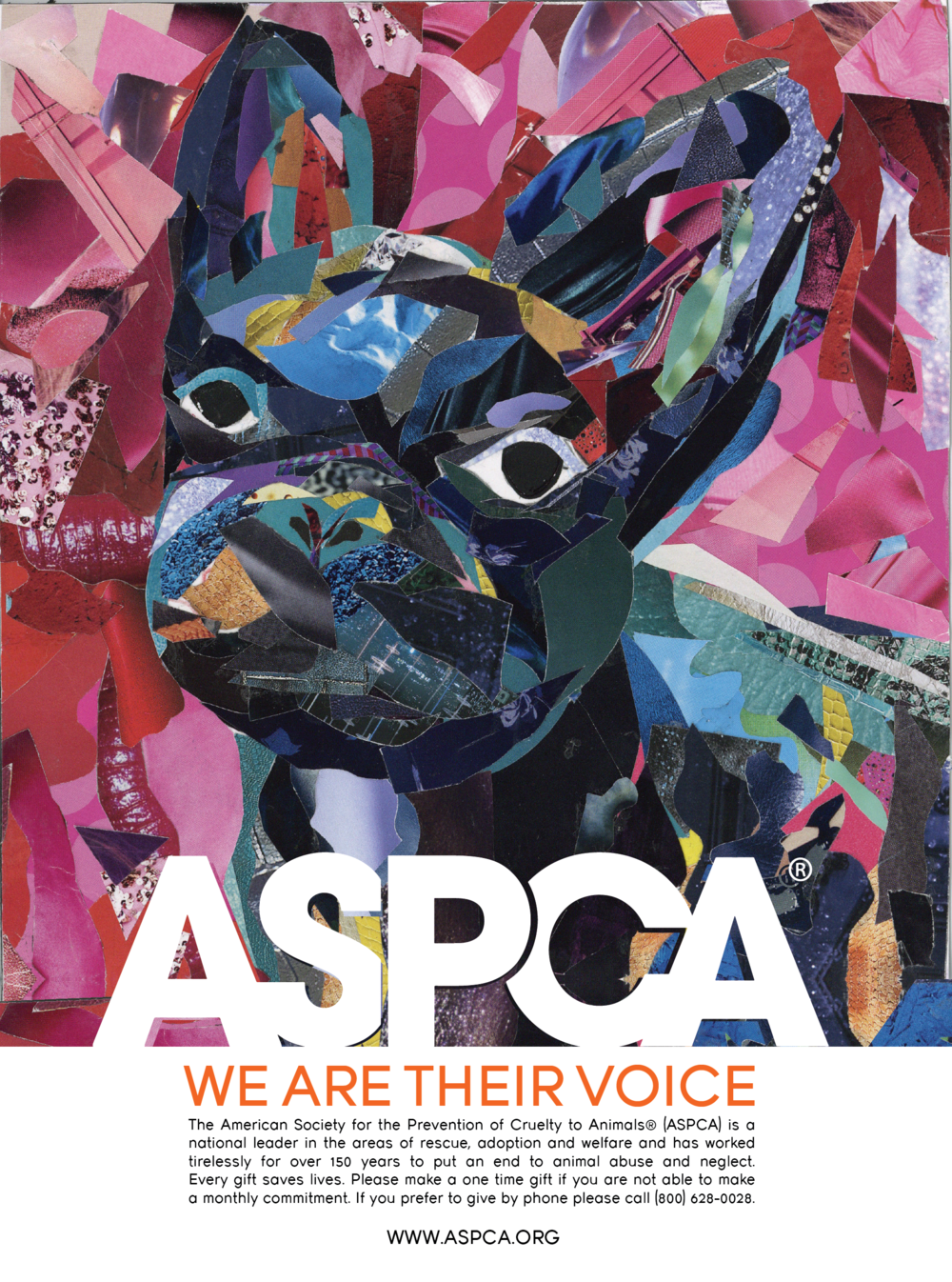 ASPCA_FrenchiePoster_Orange-01.png