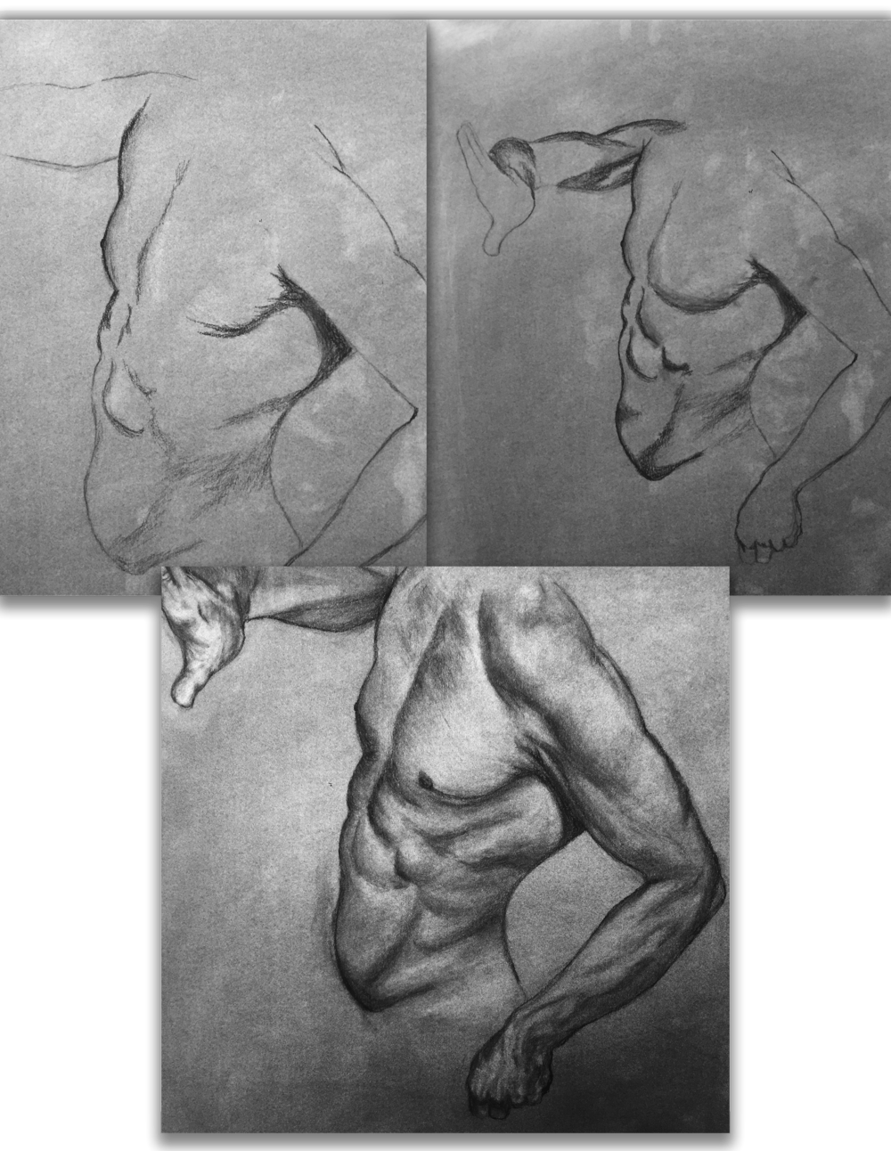 BodyMale_Drawing_Portfolio.png