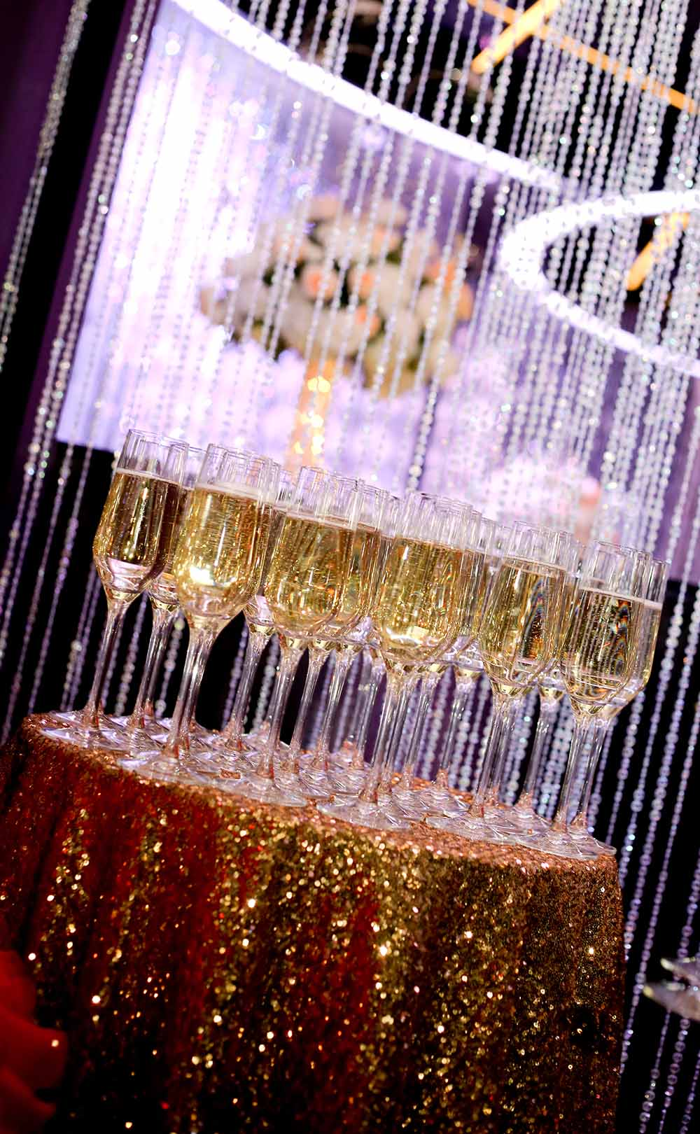 Glitz and Glam Party Uptown Charlotte 3.jpg