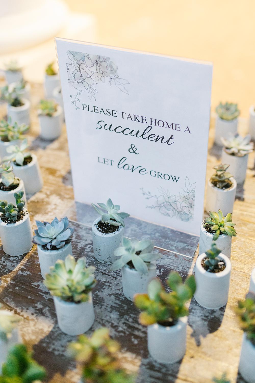 Garden Wedding CLT Daniel Stowe 95.jpg