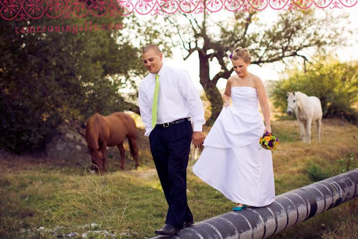Holland Ranch, San Luis Obispo, wedding photographs of Tyler Dunn + Calli Brooks taken by Cameron Ingalls