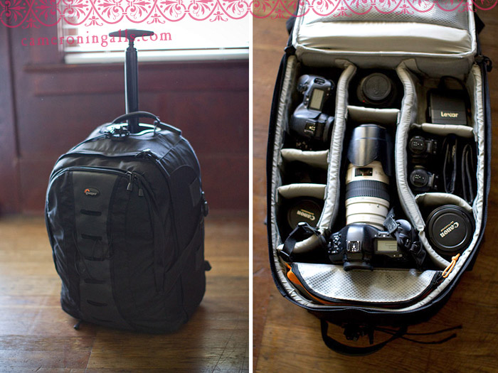 LowePro roller camera bag for sale