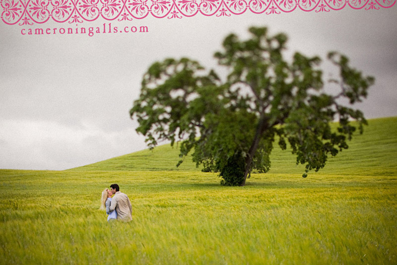 Templeton engagement photographs of Chelsea Magnusson + Trevor Franchi taken by Cameron Ingalls