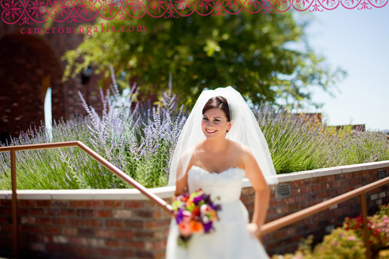 Robert Hall, Paso Robles, wedding photographs of Audra + Jeff Coelho taken by Cameron Ingalls
