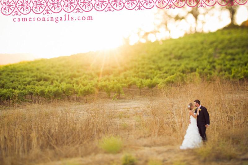 Denner Vineyard, Templeton wedding photographs of Selena Irons-Schaaf + John McCalip taken by Cameron Ingalls