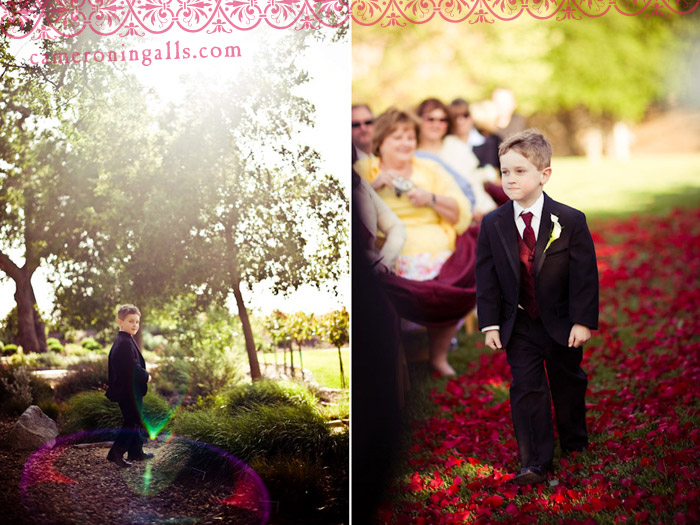 Wedding pictures of Austin + Allison taken by Cameron Ingalls at Meridian Vineyard in Paso Robles, CA