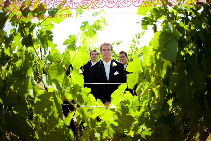 East Bay Area, Livermore, wedding photographs of Adam + Alyssa taken by Cameron Ingalls