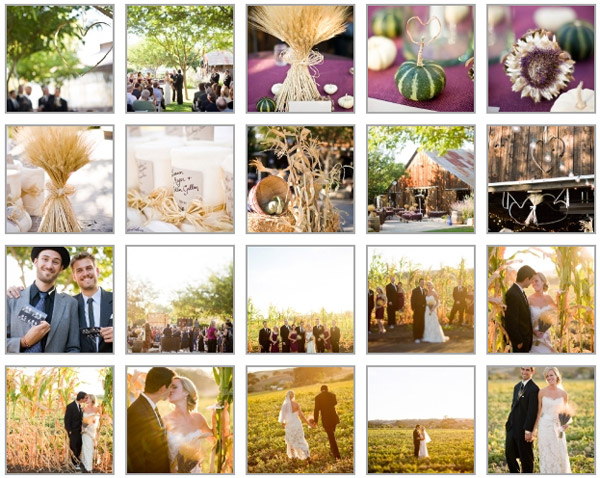 Rustic fall wedding photographs of Chelsea + Trevor Franchie taken by Cameron Ingalls