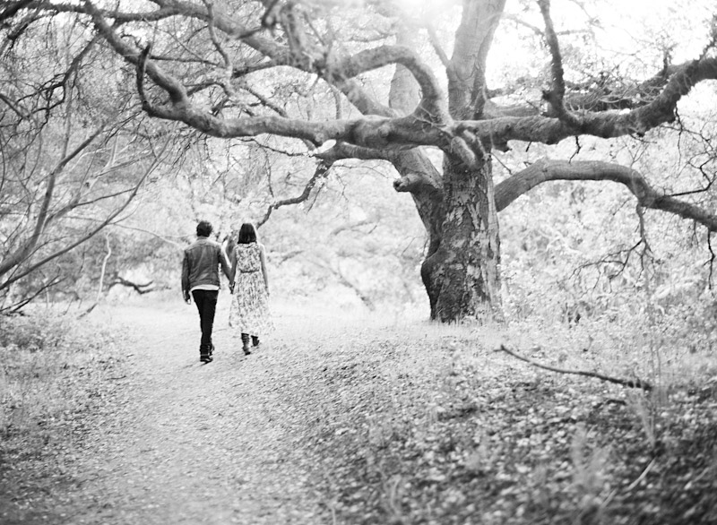 San Luis Obispo engagement medium format film photographs of couple walking to a tree.